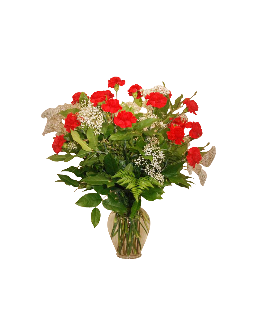 Vase Arrangement 24 Carnations